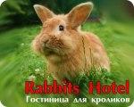 Rabbit Hotel Москва