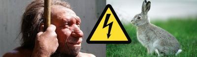 Кролики vs Неандертальцы